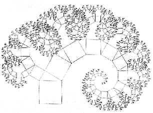 Albero di Pitagora, asimmetrico